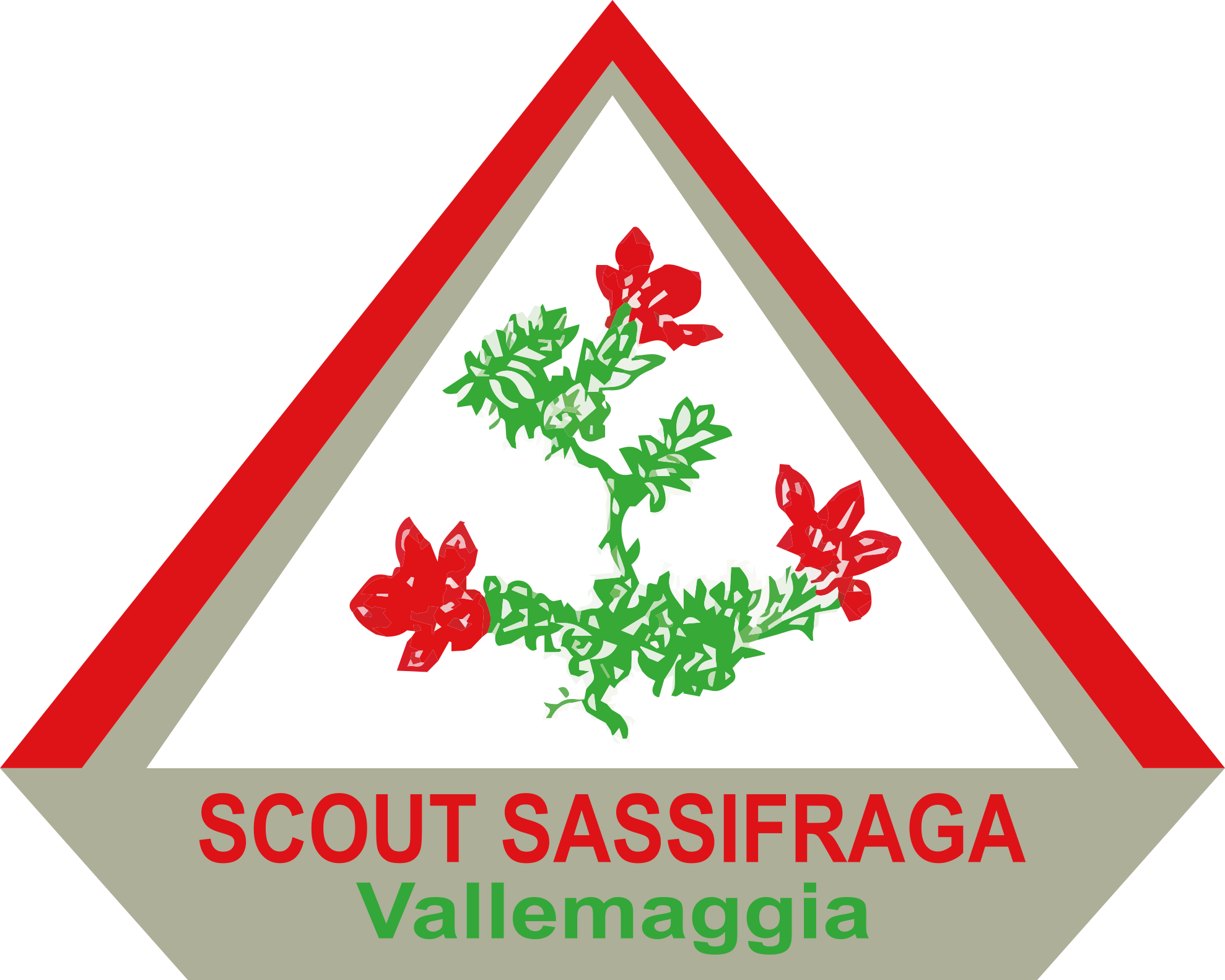 Scout Sassifraga Vallemaggia