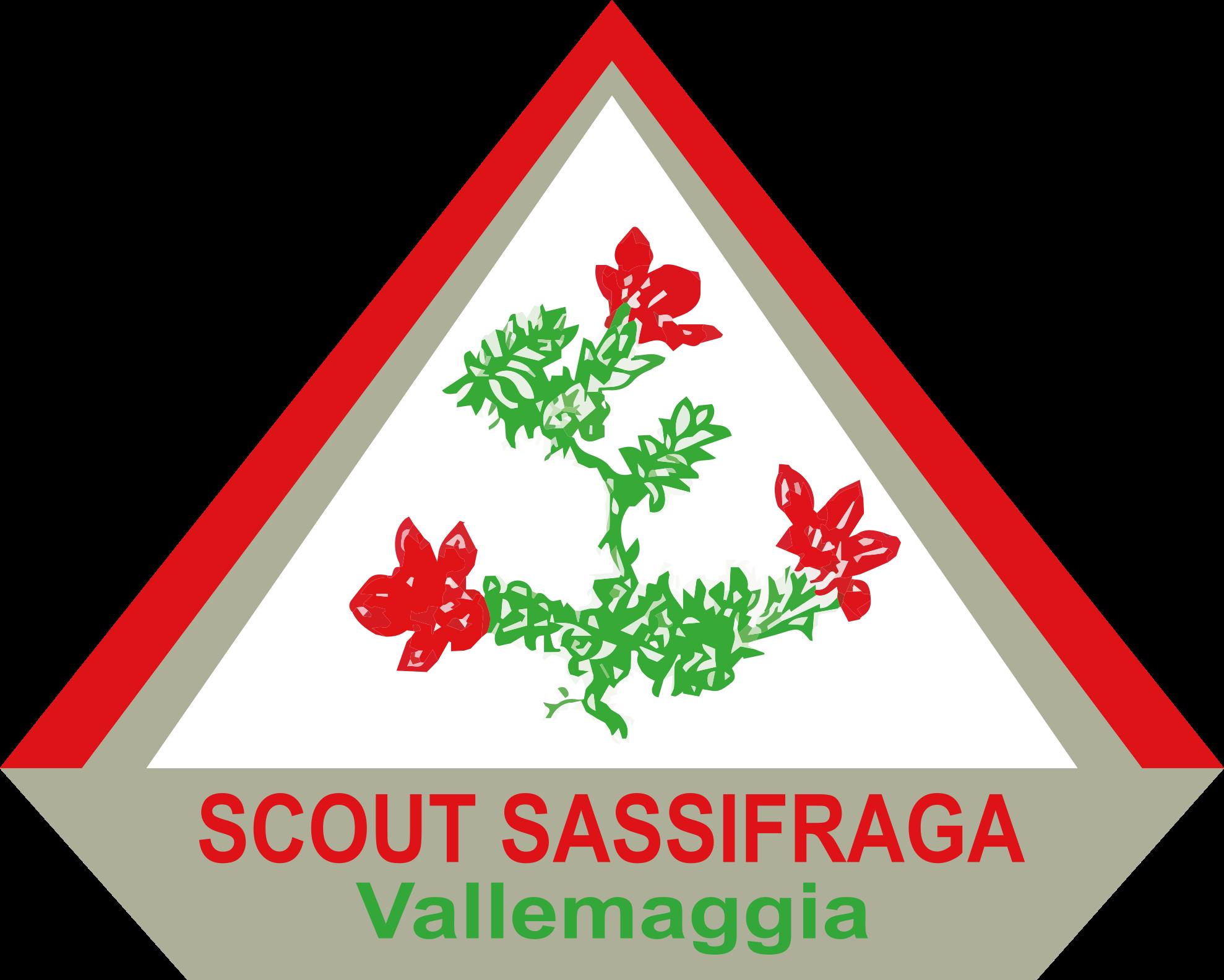 Scout Sassifraga Vallemaggia